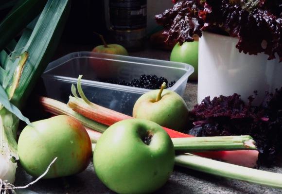 Garden produce, 30/8/20