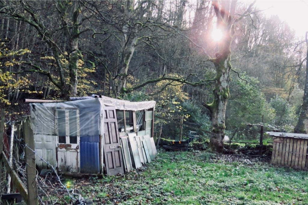Riverside shed, 12/11/20