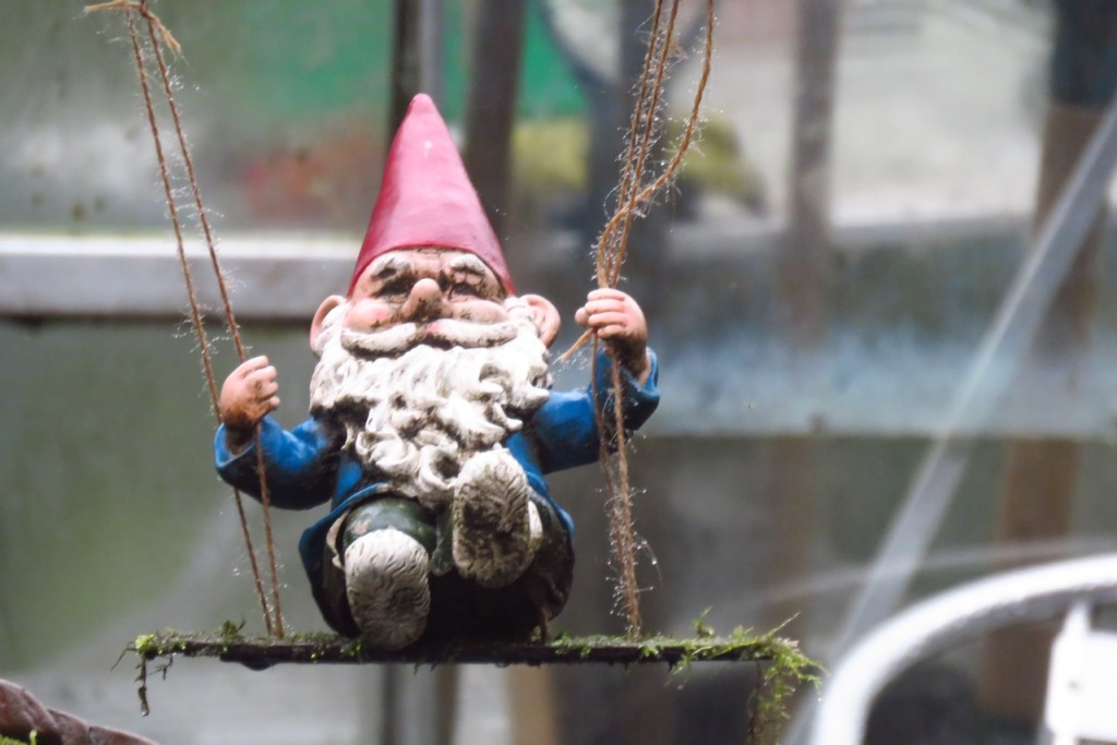 Swinging gnome, 21/12/20
