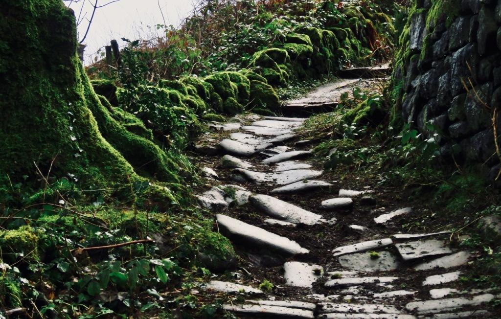 Path to Lee Wood Road, 16/1/21