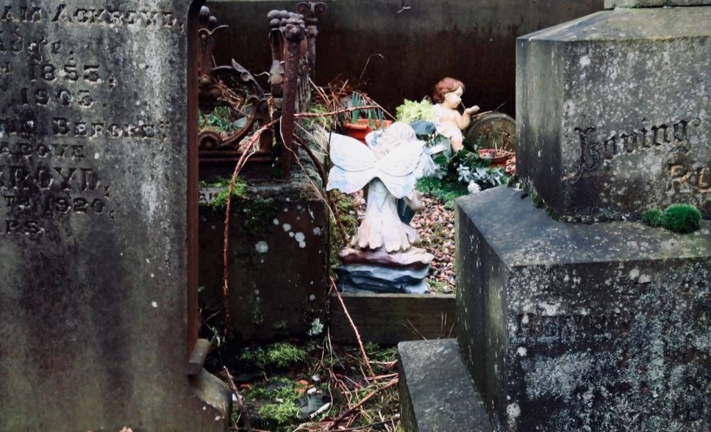 Graveyard, 24/2/21