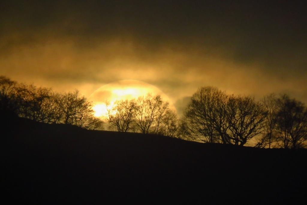 Setting sun, 3/2/21